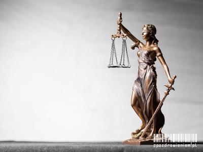 zpozdrowieniem-umowenie-postepowanie-temida-prawo